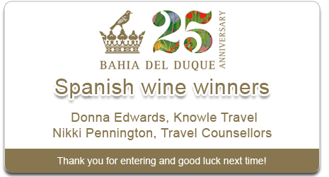 Bahia Del Duque Competition Winner