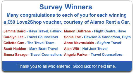 Alamo Survey Winner