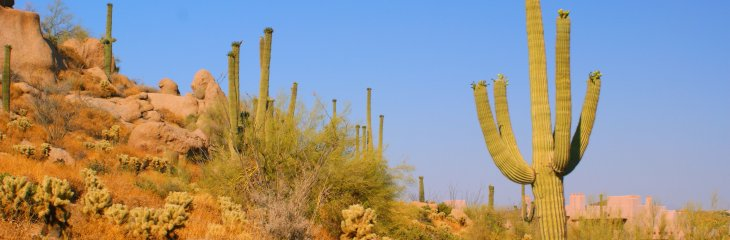 Arizona Tourism launches training webinars from May 26