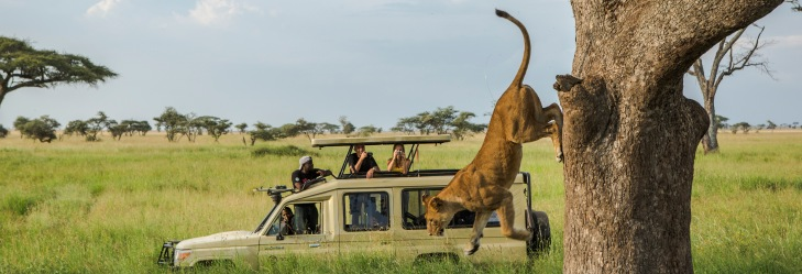 G Adventures Jane Goodall collection Tanzania Serengeti Safari